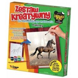 Arkliai - Arklių Išgaubto Dažymas Serija - Hakney