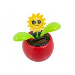 Ag347D Saulės Šokių Gėlė Raudona
