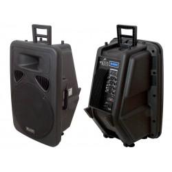 """30-919 garsiakalbis RBW-152 15 """"USB / SD"""