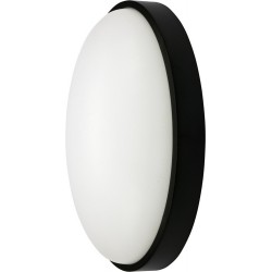 YT-81842 Led išorinės sieninės lempos 15W juoda ovalo formos