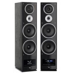 7500/2BL-ZG Aktyvus nustatyti balso Kraft VK 7500 Stereo