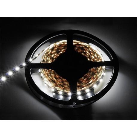 70-854 Taśma LED 24V biały zimny 5050 5m/300+DC